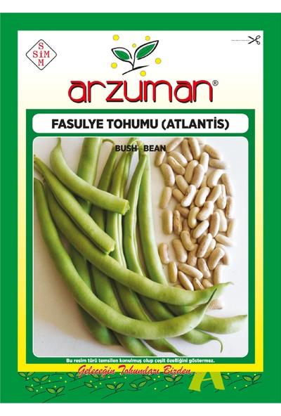 Arzuman Atlantis (Kırk Günlük) Oturak Fasülye Tohumu 50 Gram