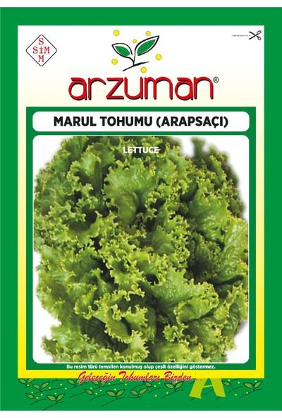 Arzuman Arapsaçı Kıvırcık Marul Tohumu 10 Gram