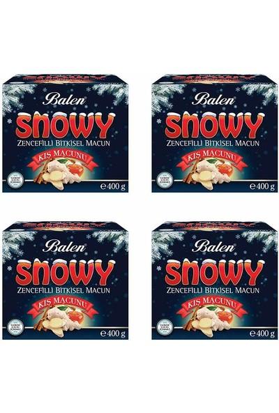 Balen Snowy Zencefilli Kış Macunu 400 gr x 4