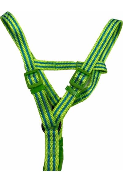 ANS Ipeksi Yeşil Köpek Tasma Seti 1,5 cm - 120 cm