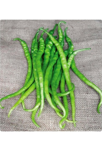 İbk İklim Bahçe Biber Tohumu Kıl Acı Sivri - 5 G (~ 400 Tohum)