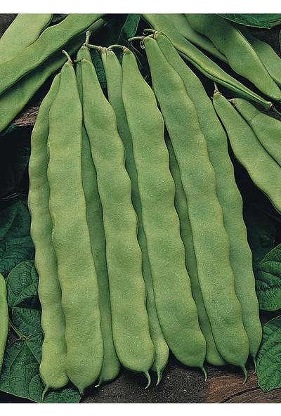 İbk İklim Bahçe Fasulye Tohumu Safiye ( Sırık ) -50 gr (~ 100 Tohum)