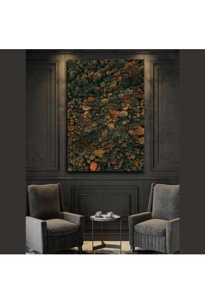 Mmo Design 70X120 cm Canvas Kanvas Tablo 68