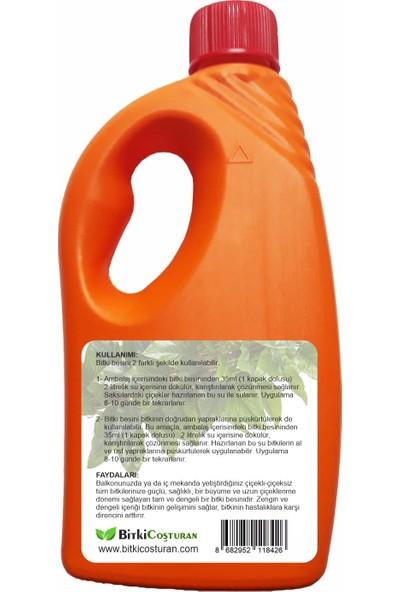 Bitki Coşturan Kaktüs Sukulentler İçin Bitki Besi Sıvı Gübre - Konsantre 500 ml