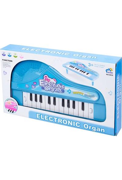 Pasifik Pilli Piyano: Electronic Organ