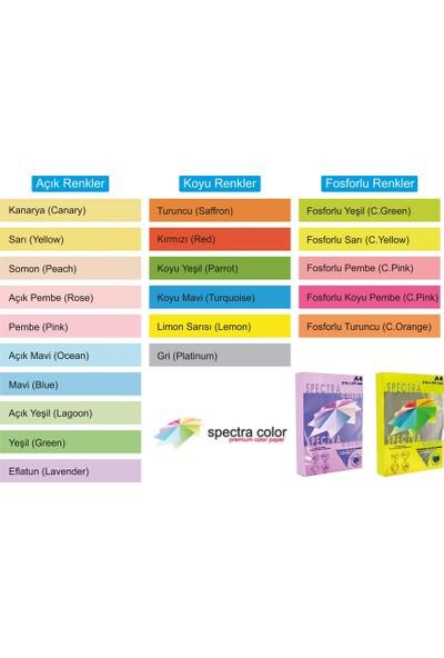Spectra A4 Fotokopi Kağıdı Renkli 80 g 500 Yaprak Renk - Kanarya Sa..