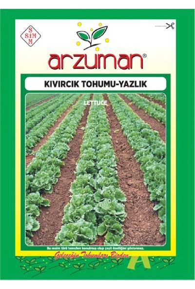 Arzuman Yazlık Marul - Kıvırcık Tohumu (10 Gr)