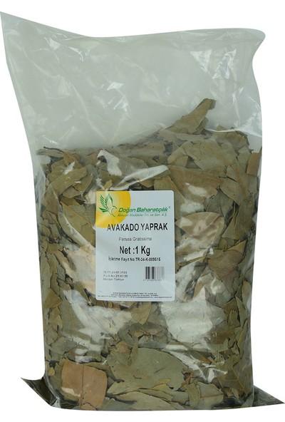 Doğan Baharat Avakado Yaprağı 1 kg