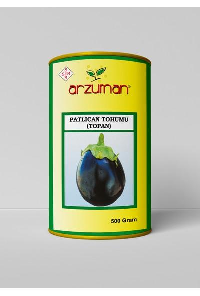 Arzuman Topan Patlıcan Tohumu 500 Gram
