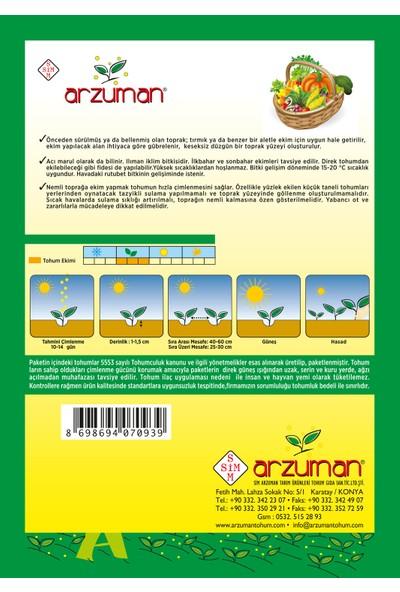 Arzuman Hindiba (Güneyik) Marul Tohumu 5 Gram