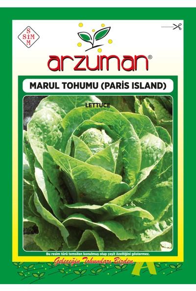Arzuman Paris Island Marul Tohumu 10 Gram