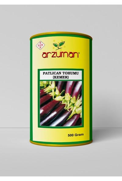 Arzuman Kemer Patlıcan Tohumu 500 Gram