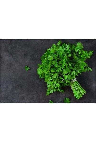 Arzuman Maydanoz Tohumu (Geniş Yaprak) 25 gr Aromatik Kokulu