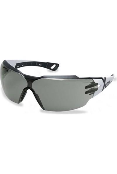 Uvex Pheos Cx2 9198237 Koruyucu Gözlük
