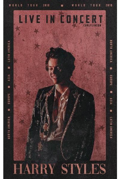 Termofom Harry Styles Posteri - Harry Styles Afişleri (50X70)