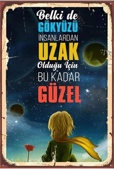 Aldebaran Reklam Küçük Prens Ahşap Retro Poster