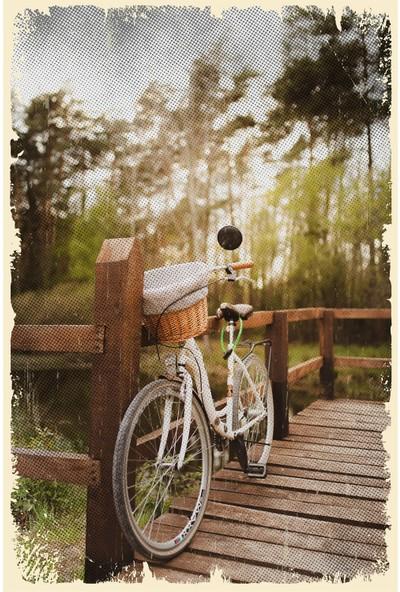 Aldebaran Reklam Retro Bisiklet Doğa Temalı Ahşap Poster