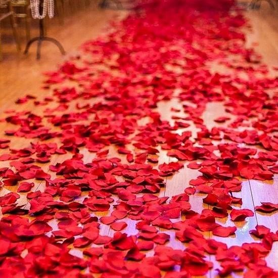 Deco Elit 1000 Adet Gül Yaprağı, Romantik Süsleme Gül Yaprakları