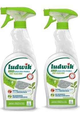 Ludwik Ekolojik Mutfak Temizleme Köpüğü 750 ml + 750 ml 2 li Set.
