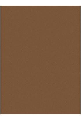 Poyraz Fon Kartonu 50 x 70 cm 10'lu Kahverengi