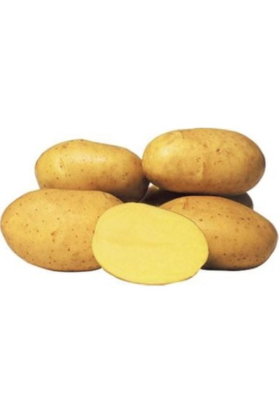 Mutlu Yöresel Patates 20 kg