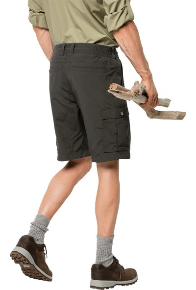 Jack Wolfskin Canyon Cargo Shorts Erkek Şort 48