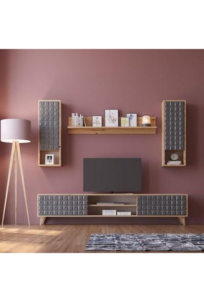 Zenio Elegance Membran Tv Ünitesi 170 cm - Safir Meşe Antrasit