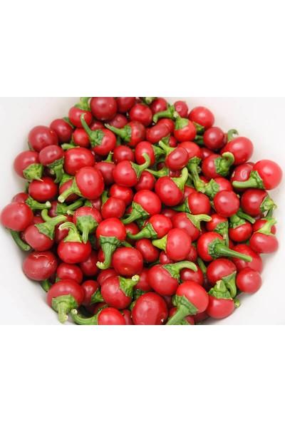 Murat Tohumculuk Murat Tohum Süper Paket Paket Acı Cherry Biber Tohumu Kiraz Biber Tohumu 150 Adet Tohumu