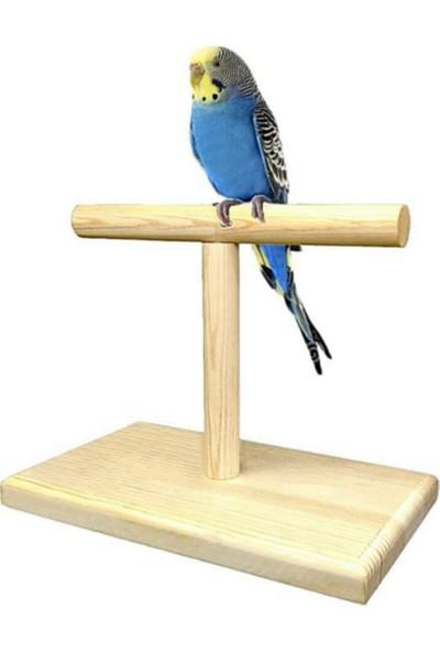 Alyones Ahşap Kuş Eğitim Standı