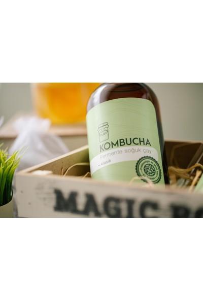 Kombucha Kombuchatea Klasik Fermente Soğuk Çay 500 ml