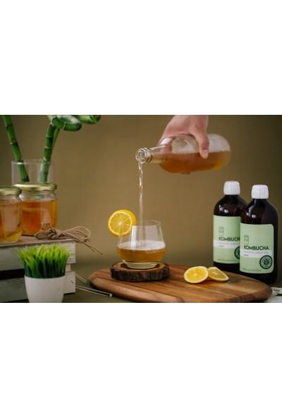 Kombuchatea Klasik Fermente Soğuk Çay 500 ml * 4'lü