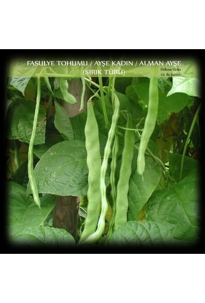 Ayşe Kadın Fasülye Tohumu 250 gr. (650+ Adet) Alman Ayşe Fasulye Tohumu Sırık Fasulye Tohumu