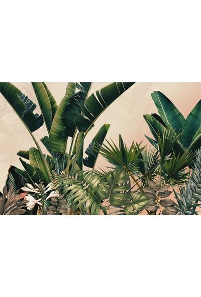 Özen Duvar Kağıdı Büyük Tropikal Ağaçlar ve Renkli Yapraklar Duvar Kağıdı