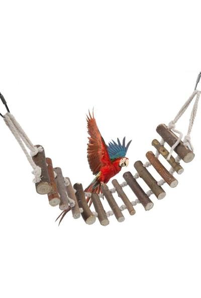 Alyones Ahşap Halatlı Salıncak Muhabbet Kuşları Için Eğlence Köprüsü