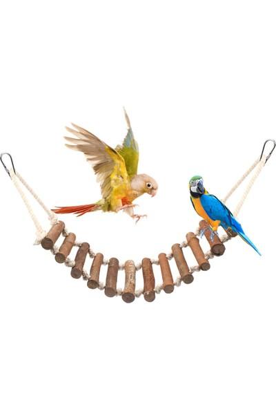 Alyones Kuş Kafesleri Için Ahşap Merdiven Kuş Merdiveni