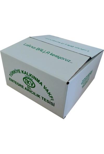 TKV Kekik Balı (350 Gr)