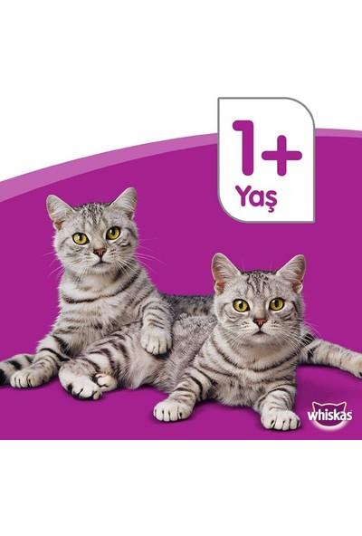 Whiskas Whıskas® Sığırlı (Biftekli) Kuru Kedi Maması 1+ Yaş 300 Gram (7 Adet)