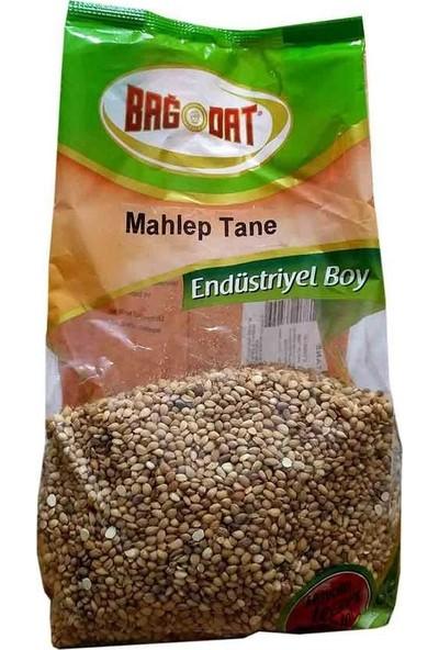 Bağdat Tane Mahlep 1000 gr