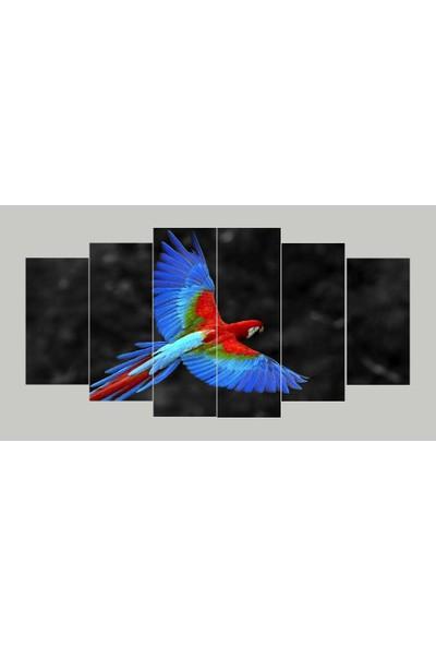 Renk Vagonu Papağan 6 Parça Mdf Tablo