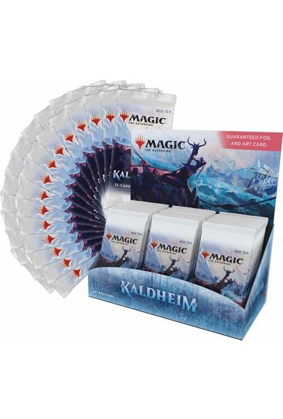 Magic The Gathering Kaldheim Set Booster Kutusu 30 Paket (360 Magic Kartı)