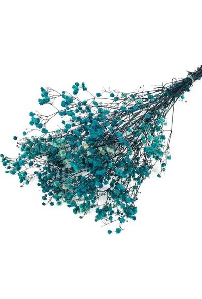 Nettenevime Kuru Çiçek Doğal Turkuaz Cipso 22GRAM 1. Kalite Şoklanmış Bozulmaz