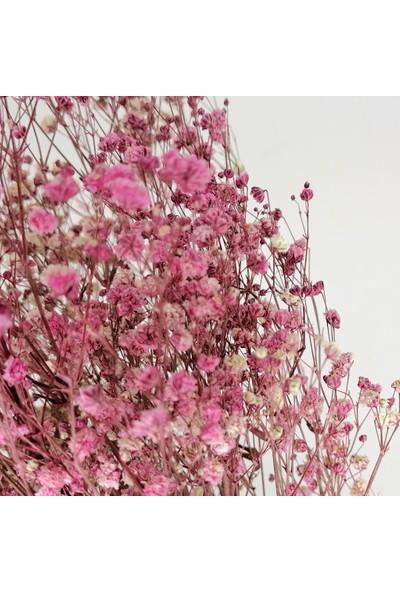 Nettenevime Kuru Çiçek Doğal Gül Kurusu Cipso 22GRAM 1. Kalite Şoklanmış Bozulmaz