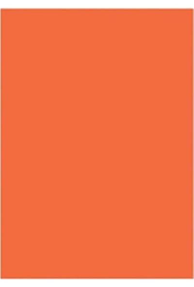 Sinarspectra FK140 50 x 70 160 gr Rose Fon Kartonu