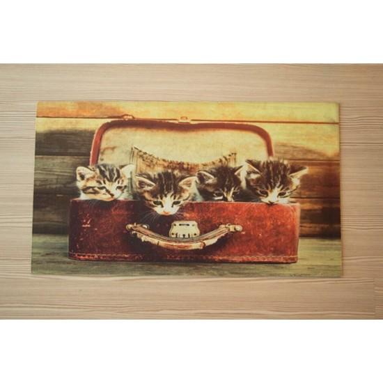 Alişveriş Kapisi Kedili Dijital Baskılı Kapı Önü Paspası 40 x 70 cm