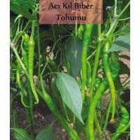 Fenton Acı Kıl Biber Tohumu 1 Paket (5 GR=700+ Adet) Acı Biber Tohumu