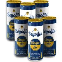 Beyoğlu Ginger Ale Zencefil Misket Limonu Aromalı Gazlı Içecek 250 ml x 6