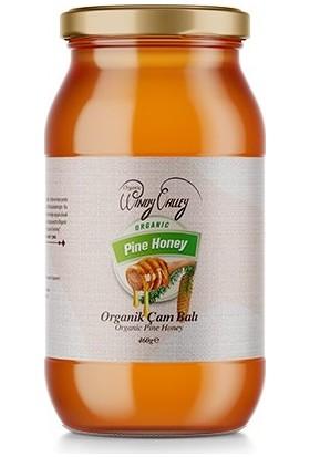 Organic Windy Valley Organik Çam Balı 460 gr