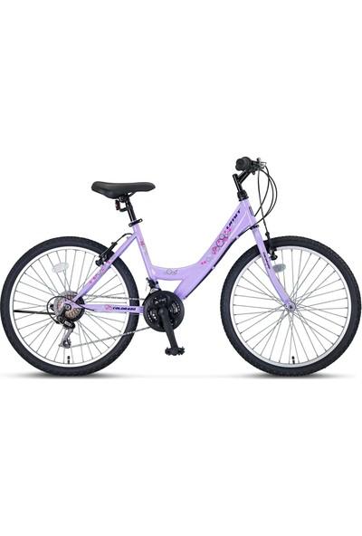 Ümit Bisiklet Ümit Colorado 24 2400 V Lady Dağ Bisikleti Mor -100141