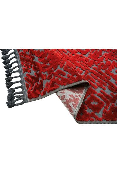 Premium Lotus 7003 Marsala Desenli Ince Kırmızı Halı