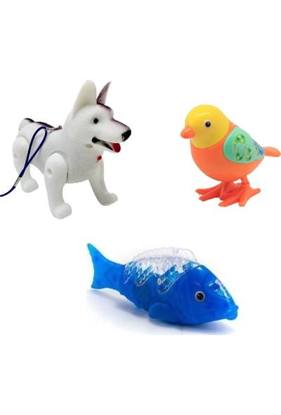 Müzikli Işıklı Yürüyen Köpek ve Balık + Kurmalı Zıplayan Kuş